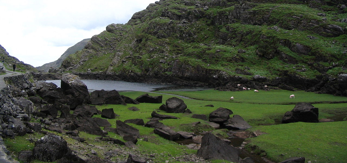 Gap of Dunloe Black Lough with Sheep